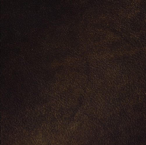 Moss - Chaucer Upholstery Leather
