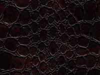 Dandi-Bronze-Equua-Vinyl-Fabric
